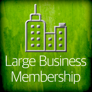 Large Business Membership